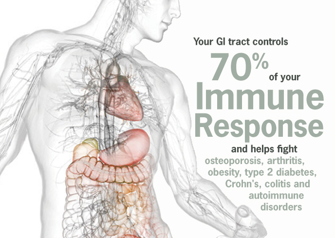 Your GI tract controls 70% of your immune response.